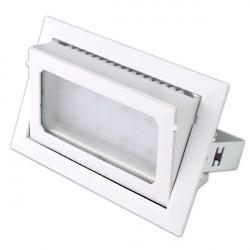 Proyector Techo orientable 30W luz blanca