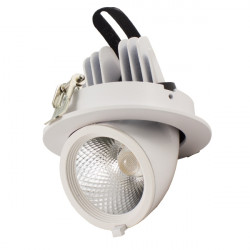 LED Ceiling Spotlight Orientable - 36W, Round